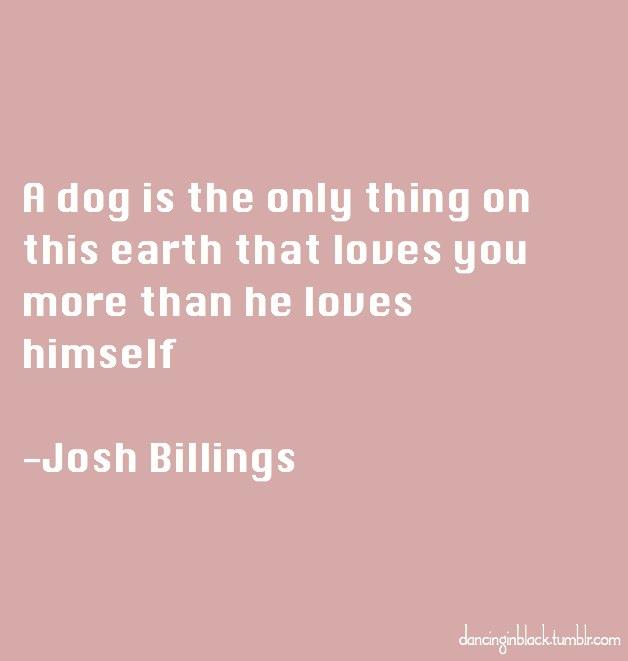 joshbillings